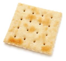 stock-photo-51257404-single-salted-cracker
